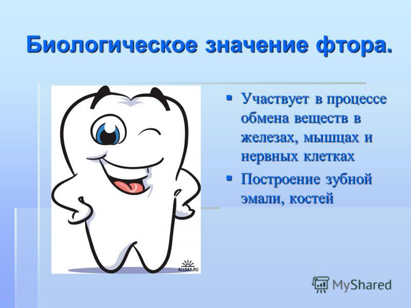 Биологическое значение фтора. Участвует в процессе обмена веществ в железах, мышцах и нервных клетках Участвует в процессе обмена веществ в железах, мышцах и нервных клетках Построение зубной эмали, костей Построение зубной эмали, костей