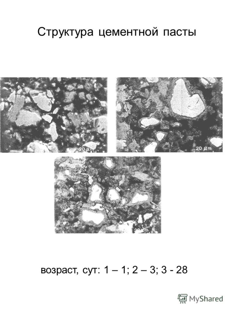 Структура цементной пасты возраст, сут: 1 – 1; 2 – 3; 3 - 28