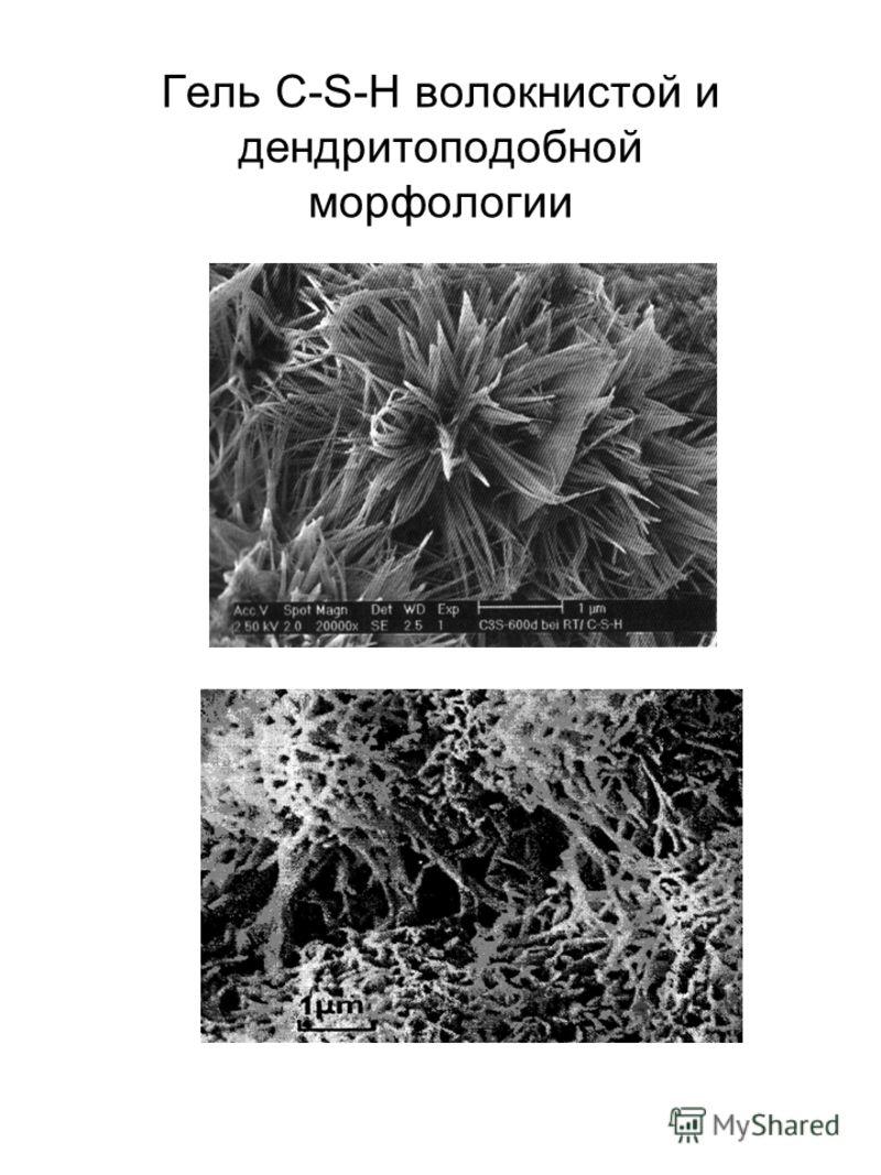 Гель C-S-H волокнистой и дендритоподобной морфологии