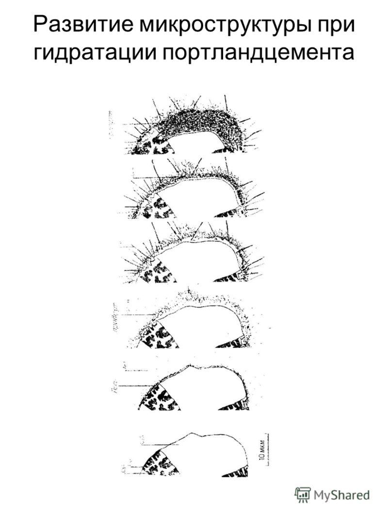 Развитие микроструктуры при гидратации портландцемента