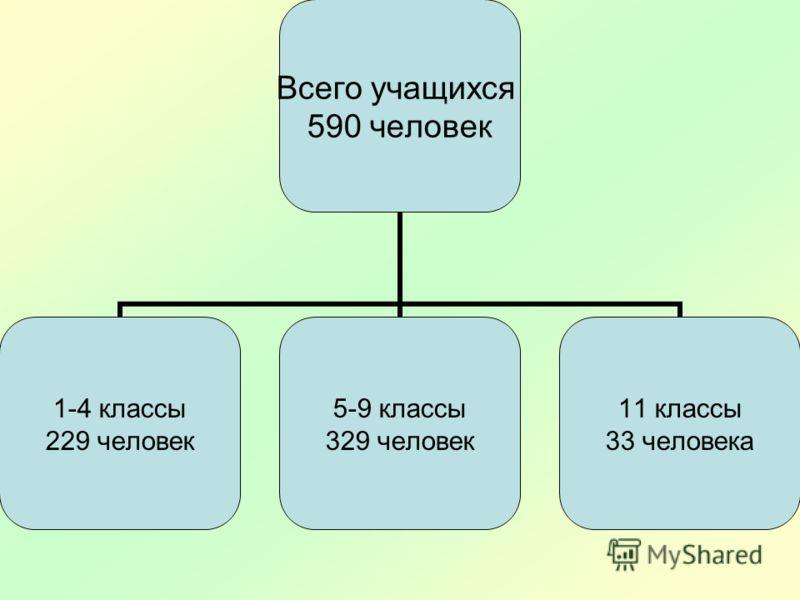 Всего учащихся 590 человек 1-4 классы 229 человек 5-9 классы 329 человек 11 классы 33 человека
