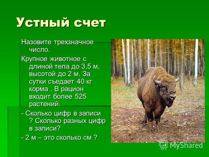 Устный счет Назовите трехзначное число. Крупное животное с длиной тела до 3,5 м, высотой до 2 м. За сутки съедает 40 кг корма. В рацион входит более 525 растений. - Сколько цифр в записи ? Сколько разных цифр в записи? - 2 м – это сколько см ?