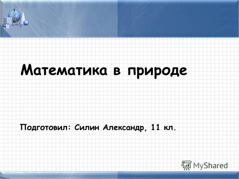 Математика в природе Подготовил: Силин Александр, 11 кл.