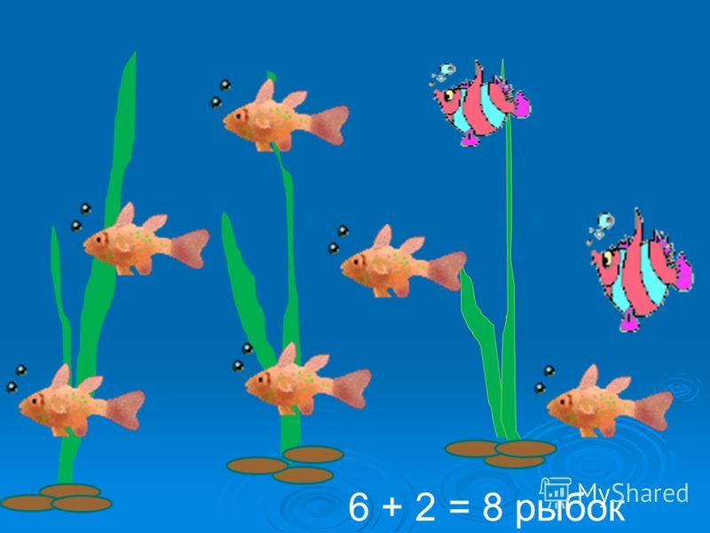 6 + 2 = 8 рыбок