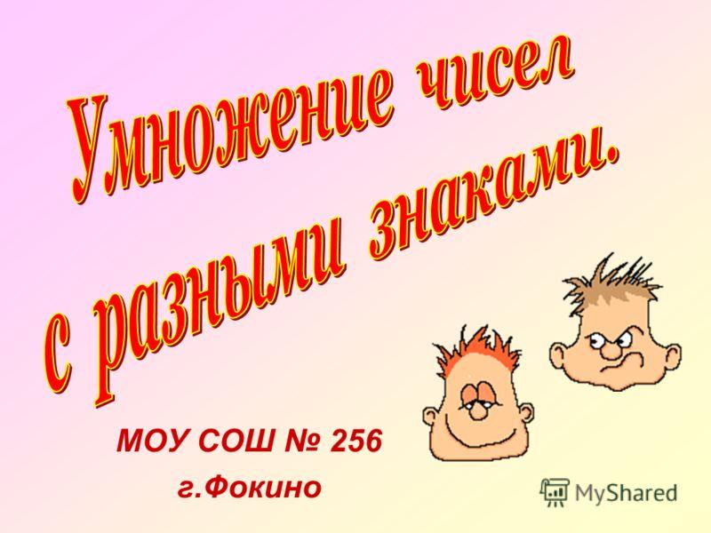 МОУ СОШ 256 г.Фокино