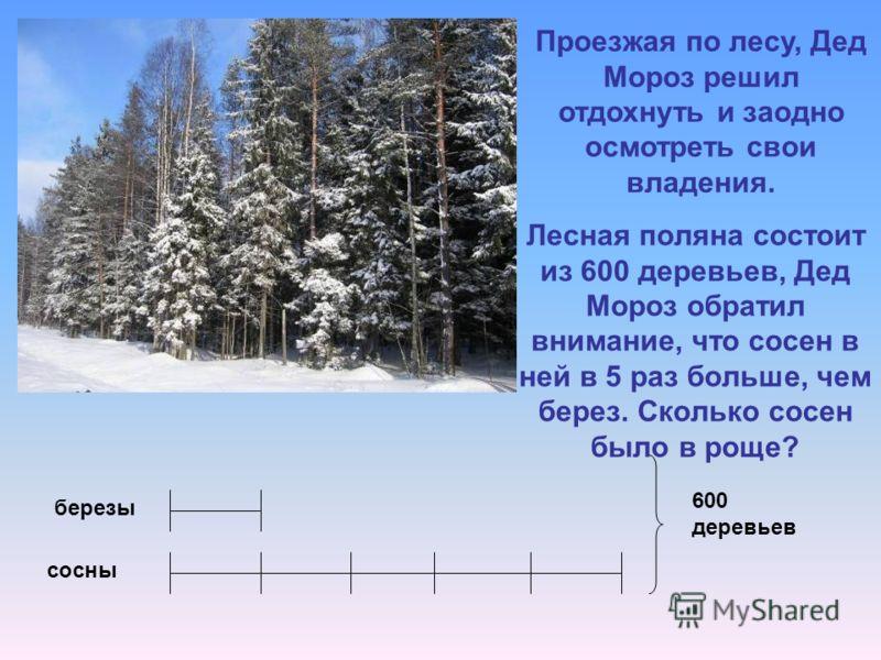 Лесная поляна состоит из 600 деревьев, Дед Мороз обратил внимание, что сосен в ней в 5 раз больше, чем берез. Сколько сосен было в роще? 600 деревьев березы сосны Проезжая по лесу, Дед Мороз решил отдохнуть и заодно осмотреть свои владения.