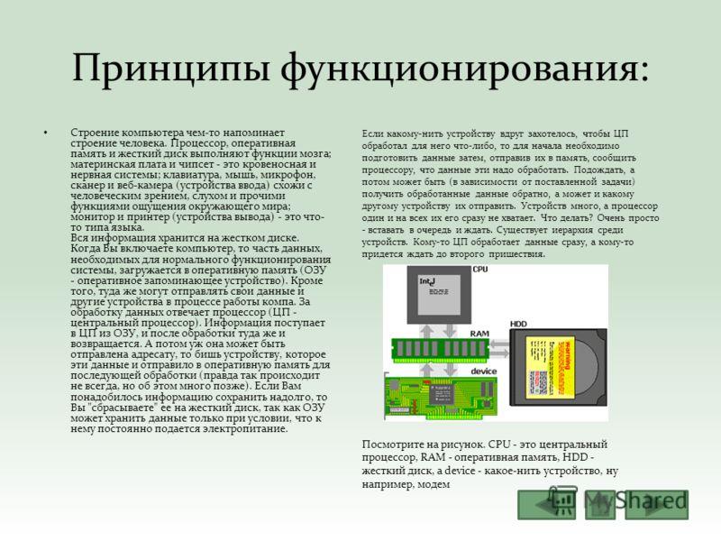 Принципы функционирования: Строение компьютера чем-то напоминает строение человека. Процессор, оперативная память и жесткий диск выполняют функции мозга; материнская плата и чипсет - это кровеносная и нервная системы; клавиатура, мышь, микрофон, скан