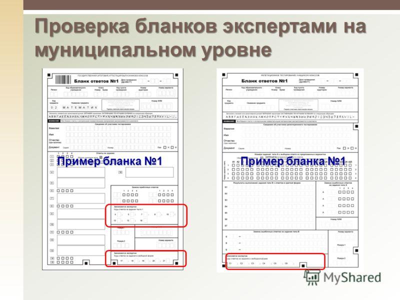 Пример бланка 1 Проверка бланков экспертами на муниципальном уровне