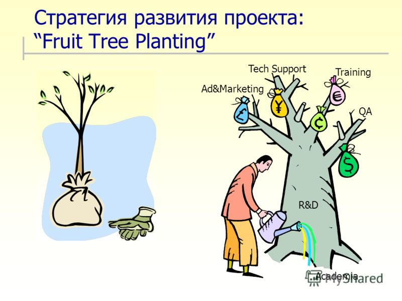 Стратегия развития проекта: Fruit Tree Planting Academia R&D QA Ad&Marketing Tech Support Training