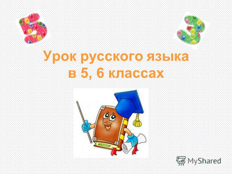 Урок русского языка в 5, 6 классах