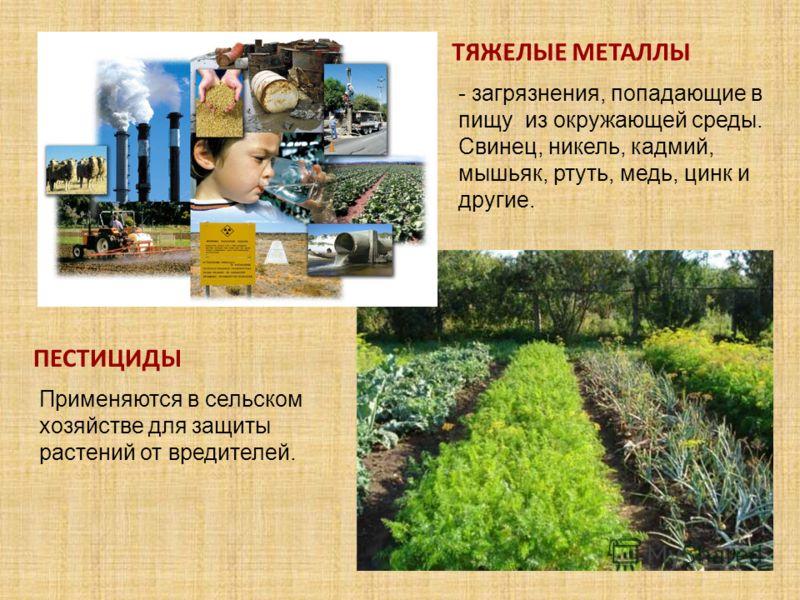 ТЯЖЕЛЫЕ МЕТАЛЛЫ ПЕСТИЦИДЫ Применяются в сельском хозяйстве для защиты растений от вредителей. - загрязнения, попадающие в пищу из окружающей среды. Свинец, никель, кадмий, мышьяк, ртуть, медь, цинк и другие.