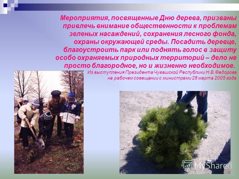 Мероприятия, посвященные Дню дерева, призваны привлечь внимание общественности к проблемам зеленых насаждений, сохранения лесного фонда, охраны окружающей среды. Посадить деревце, благоустроить парк или поднять голос в защиту особо охраняемых природн