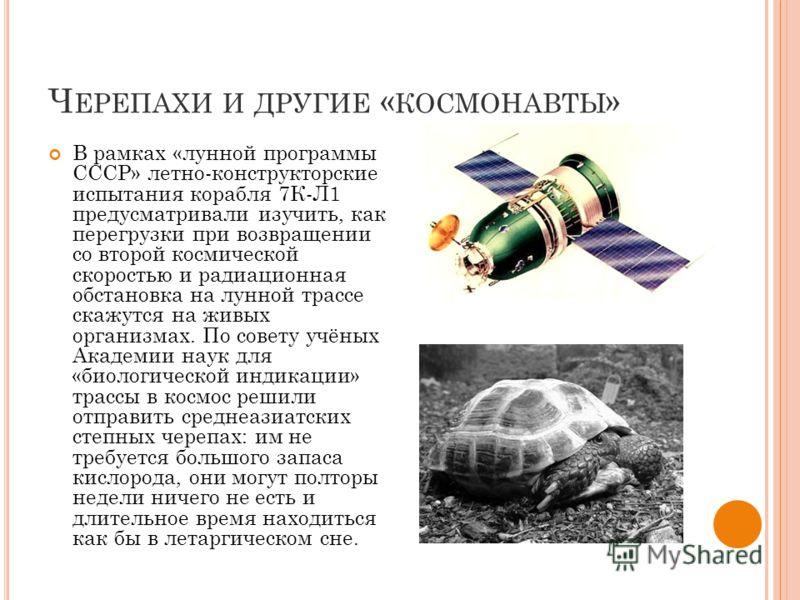 Ч ЕРЕПАХИ И ДРУГИЕ « КОСМОНАВТЫ » В рамках «лунной программы СССР» летно-конструкторские испытания корабля 7К-Л1 предусматривали изучить, как перегрузки при возвращении со второй космической скоростью и радиационная обстановка на лунной трассе скажут