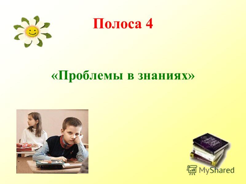 Полоса 4 «Проблемы в знаниях»