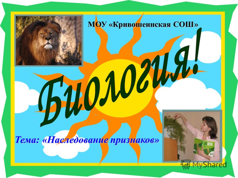 Тема: «Наследование признаков» МОУ «Кривошеинская СОШ»
