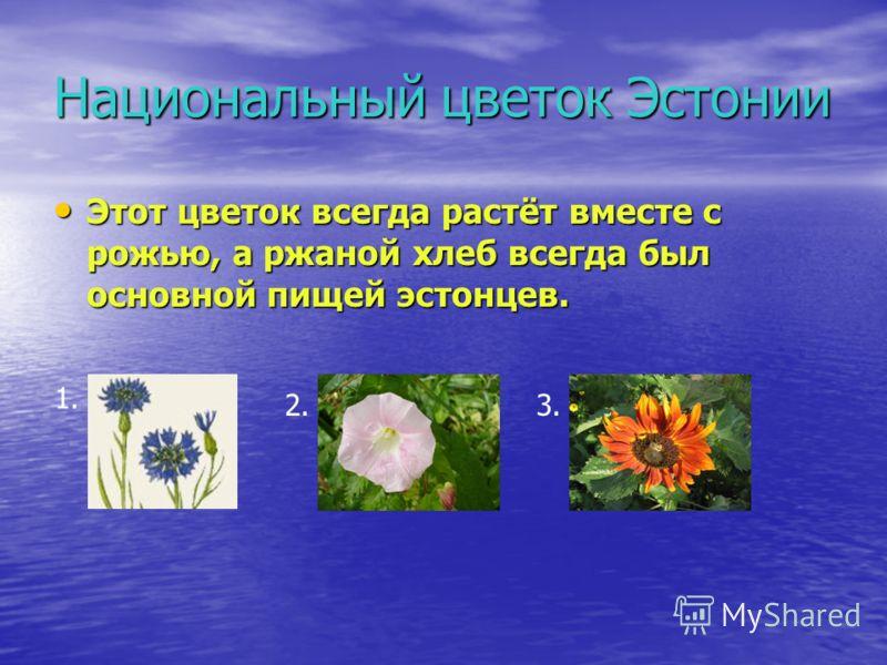 Национальный цветок Эстонии Этот цветок всегда растёт вместе с рожью, а ржаной хлеб всегда был основной пищей эстонцев. Этот цветок всегда растёт вместе с рожью, а ржаной хлеб всегда был основной пищей эстонцев. 1. 2.3.