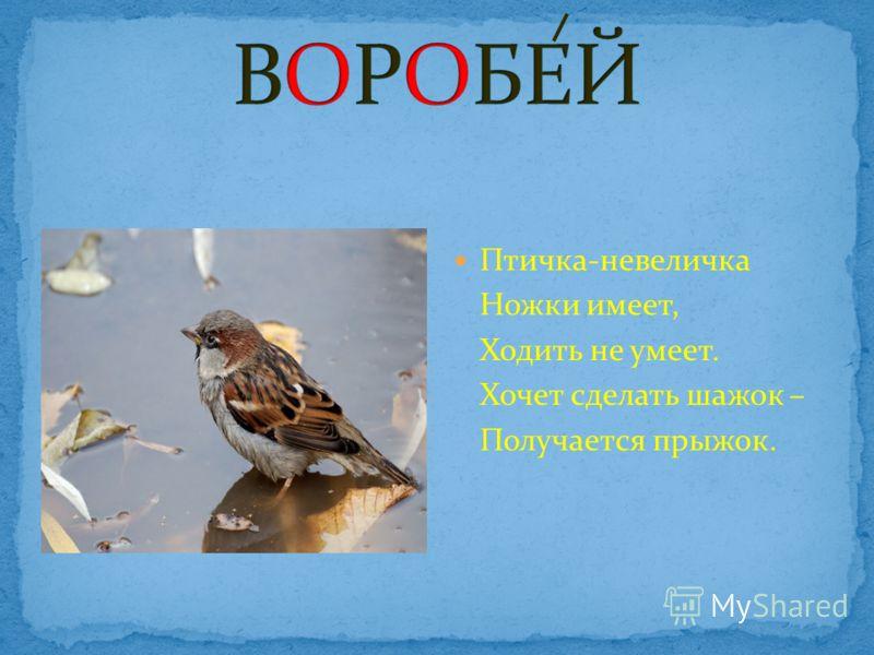 Птичка-невеличка Ножки имеет, Ходить не умеет. Хочет сделать шажок – Получается прыжок.