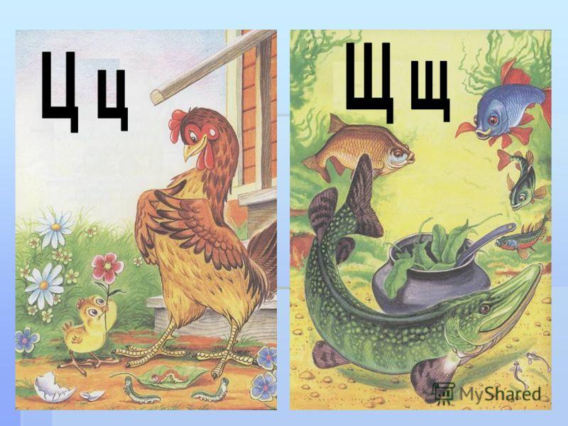 7 Заглавные буквы Ц и Щ Ц и Щ
