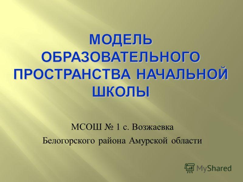 МСОШ 1 с. Возжаевка Белогорского района Амурской области