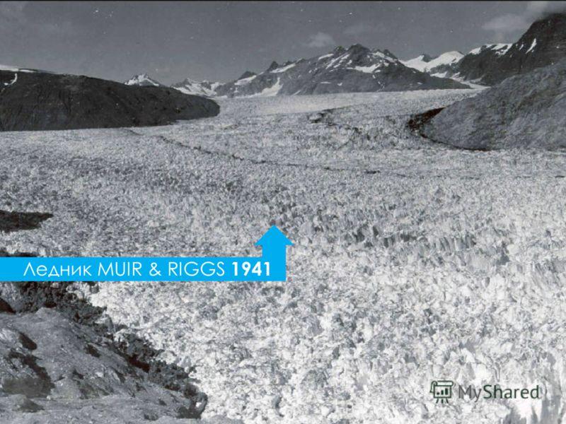 Ледник MUIR & RIGGS 1941