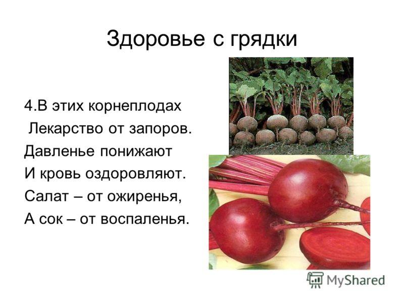 Здоровье с грядки 4.В этих корнеплодах Лекарство от запоров. Давленье понижают И кровь оздоровляют. Салат – от ожиренья, А сок – от воспаленья.
