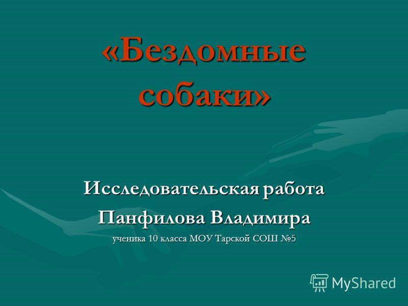 «Бездомные собаки» Исследовательская работа Панфилова Владимира ученика 10 класса МОУ Тарской СОШ 5