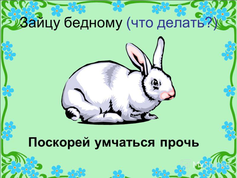 Зайцу бедному (что делать?) Поскорей умчаться прочь
