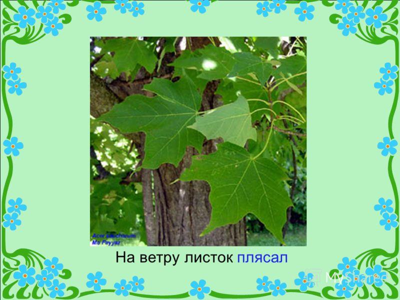 На ветру листок плясал