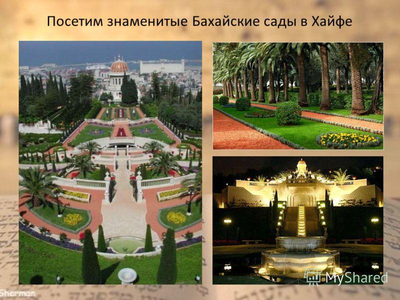 Посетим знаменитые Бахайские сады в Хайфе