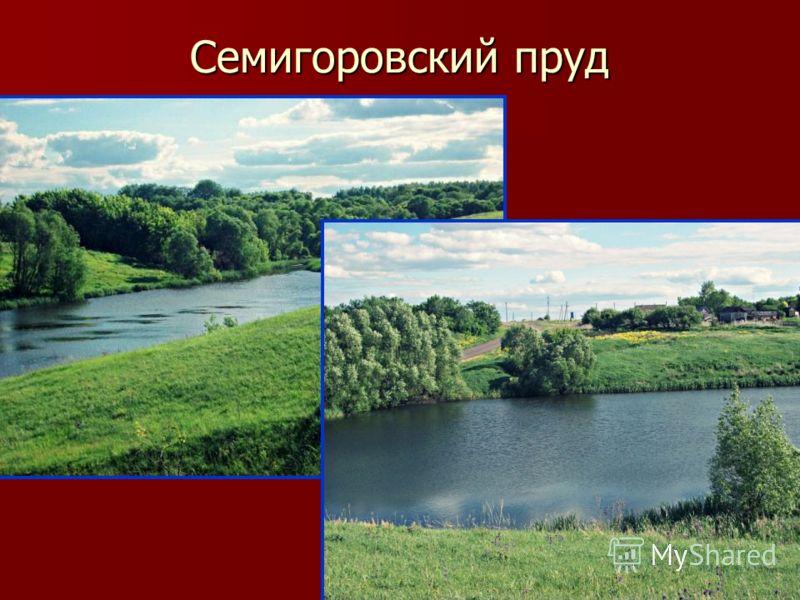 Семигоровский пруд