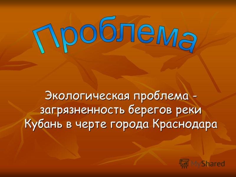 Экологическая проблема - загрязненность берегов реки Кубань в черте города Краснодара