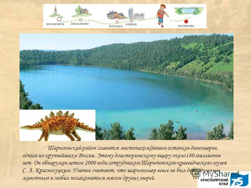 Шарыповский район славится местонахождением останков динозавров, одним из крупнейших в России. Этому доисторическому ящеру около180 миллионов лет. Он обнаружен летом 2000 года сотрудником Шарыповского краеведческого музея С. А. Краснолуцким. Ученые с