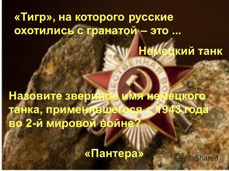«Тигр», на которого русские охотились с гранатой – это... Немецкий танк Назовите звериное имя немецкого танка, применявшегося с 1943 года во 2-й мировой войне? «Пантера»
