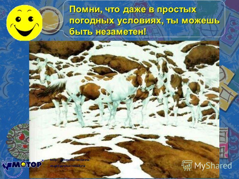 Помни, что даже в простых погодных условиях, ты можешь быть незаметен!