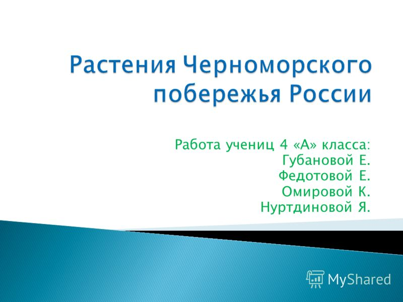 Работа учениц 4 «А» класса: Губановой Е. Федотовой Е. Омировой К. Нуртдиновой Я.