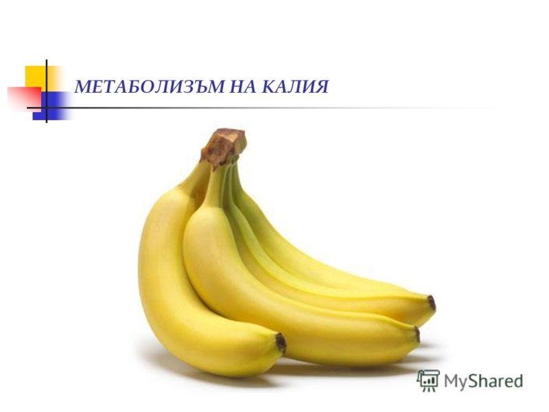 МЕТАБОЛИЗЪМ НА КАЛИЯ