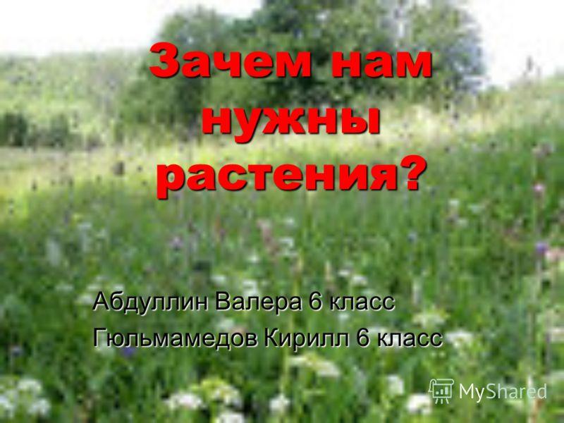 Зачем нам нужны растения? Абдуллин Валера 6 класс Гюльмамедов Кирилл 6 класс