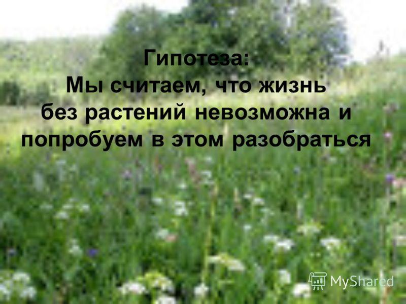 Гипотеза: Мы считаем, что жизнь без растений невозможна и попробуем в этом разобраться