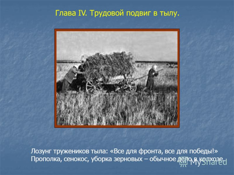 Глава IV. Трудовой подвиг в тылу. Лозунг тружеников тыла: «Все для фронта, все для победы!» Прополка, сенокос, уборка зерновых – обычное дело в колхозе.