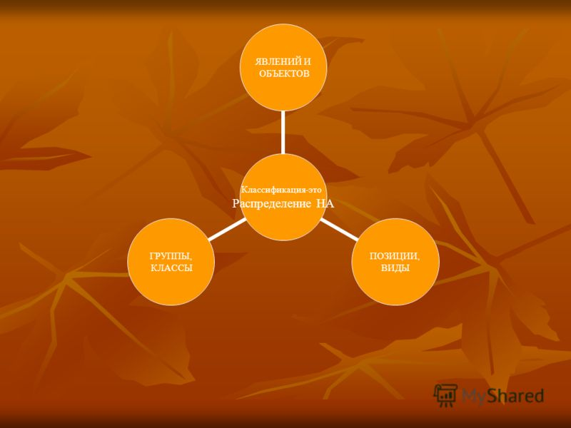 Классификации, группировки и номенклатуры представляют собой важный инструмент изучения социально- экономических явлений и организации информации