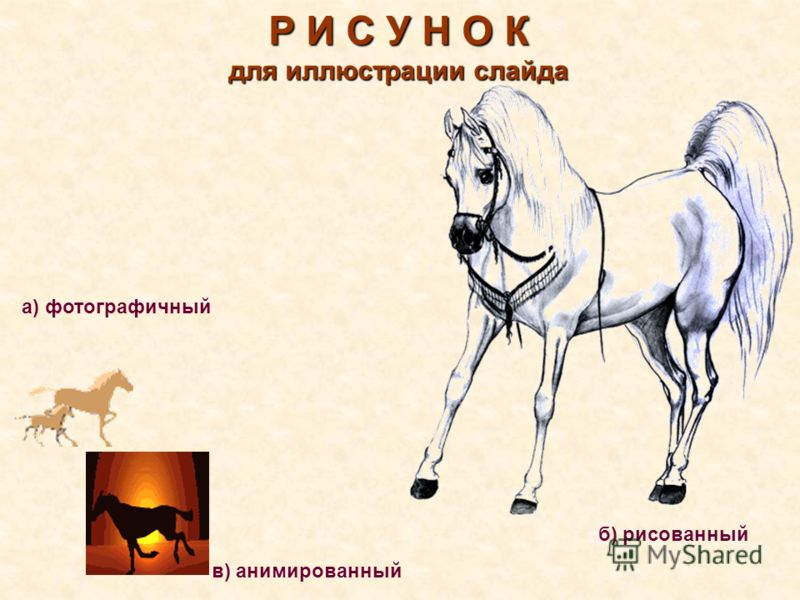 Р И С У Н О К для иллюстрации слайда а) фотографичный в) анимированный б) рисованный