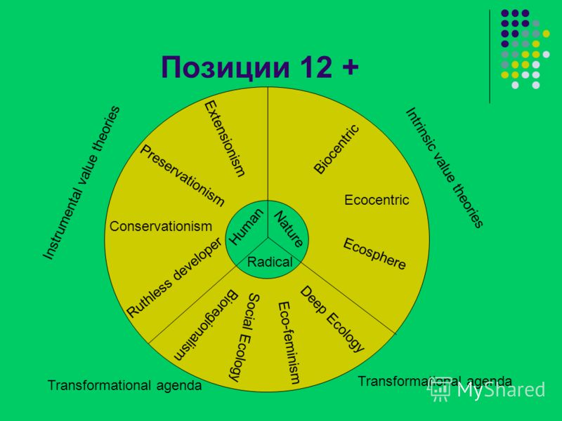 Позиции 12 + Nature Radical Ruthless developer Conservationism Preservationism Extensionism Human Biocentric Ecocentric Ecosphere Deep Ecology Eco-feminism Social Ecology Bioregionalism Instrumental value theories Intrinsic value theories Transformat