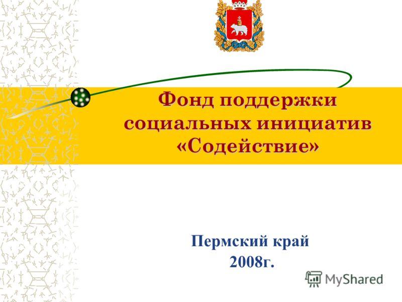 Фонд поддержки социальных инициатив «Содействие» Фонд поддержки социальных инициатив «Содействие» Пермский край 2008г.