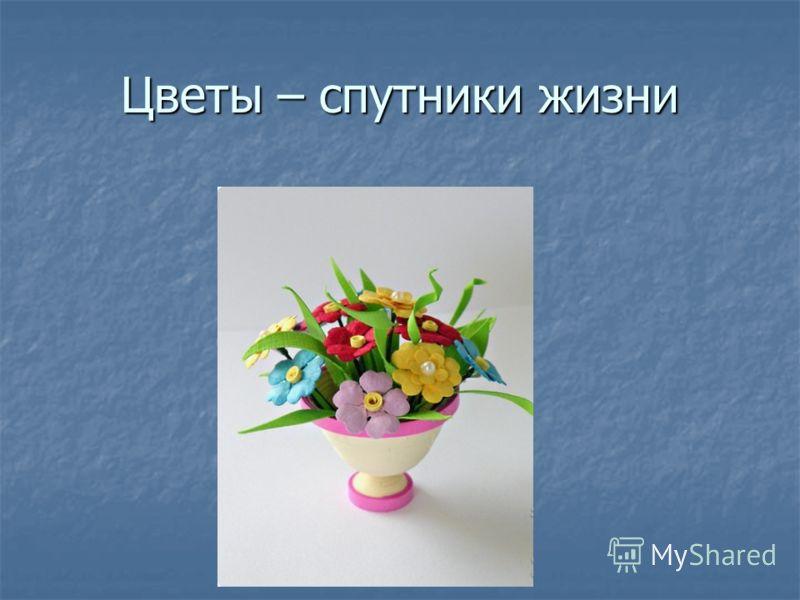 Цветы – спутники жизни