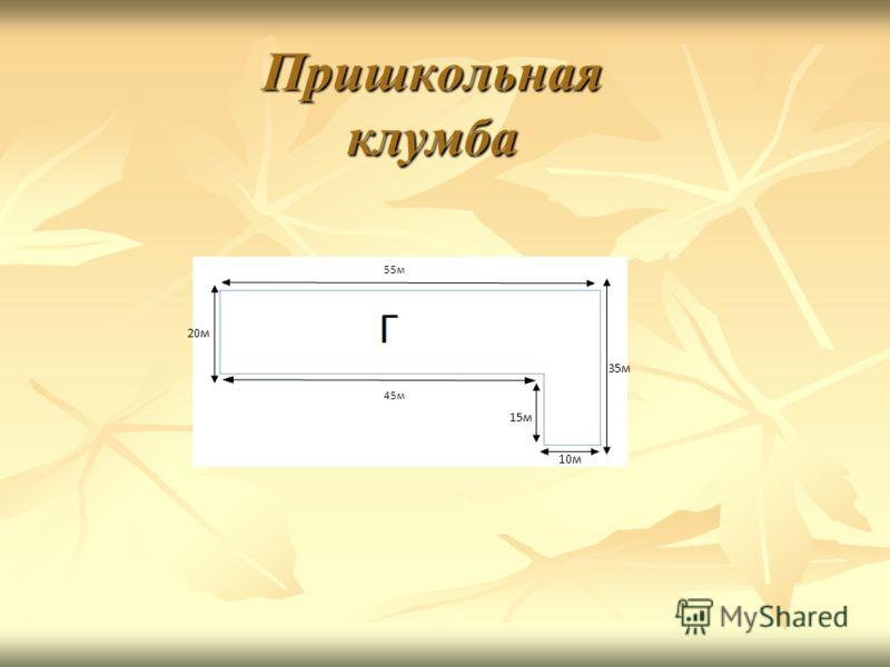 Пришкольная клумба 55м 45м 10м 15м 20м 35м