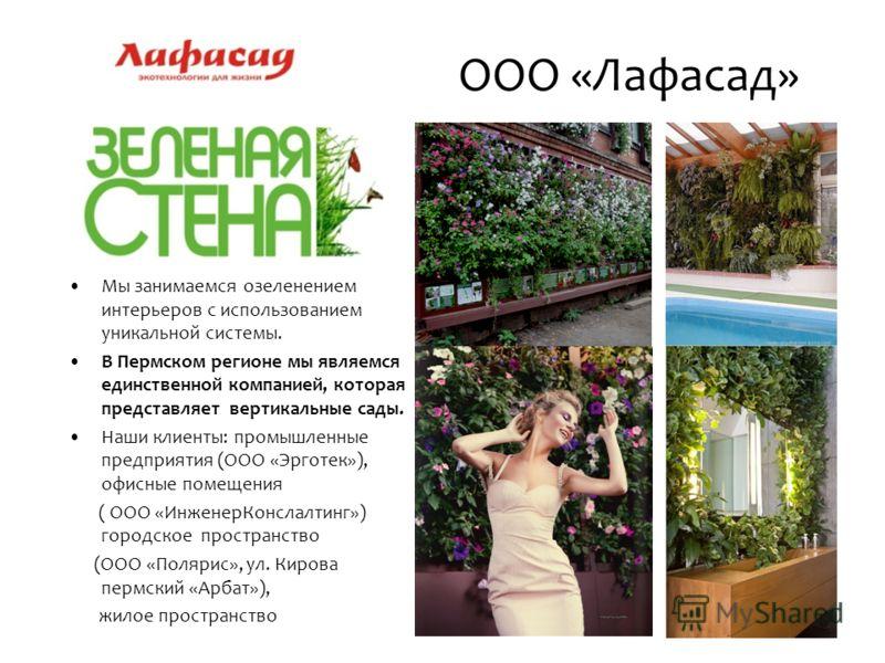 Мы занимаемся озеленением интерьеров с использованием уникальной системы. В Пермском регионе мы являемся единственной компанией, которая представляет вертикальные сады. Наши клиенты: промышленные предприятия (ООО «Эрготек»), офисные помещения ( ООО «