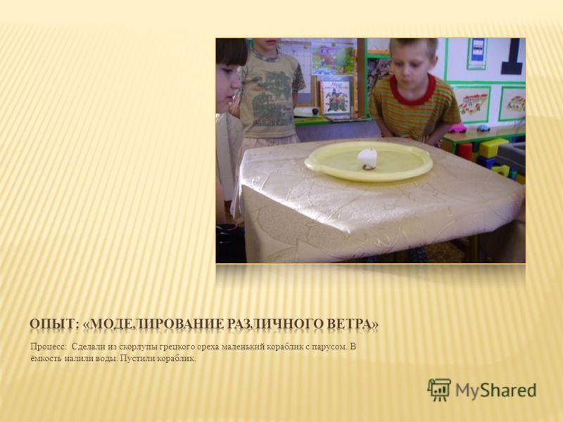 Процесс: Сделали из скорлупы грецкого ореха маленький кораблик с парусом. В ёмкость налили воды. Пустили кораблик.
