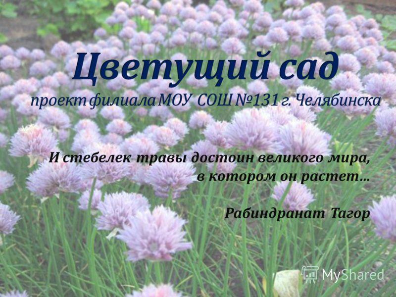 И стебелек травы достоин великого мира, в котором он растет… Рабиндранат Тагор