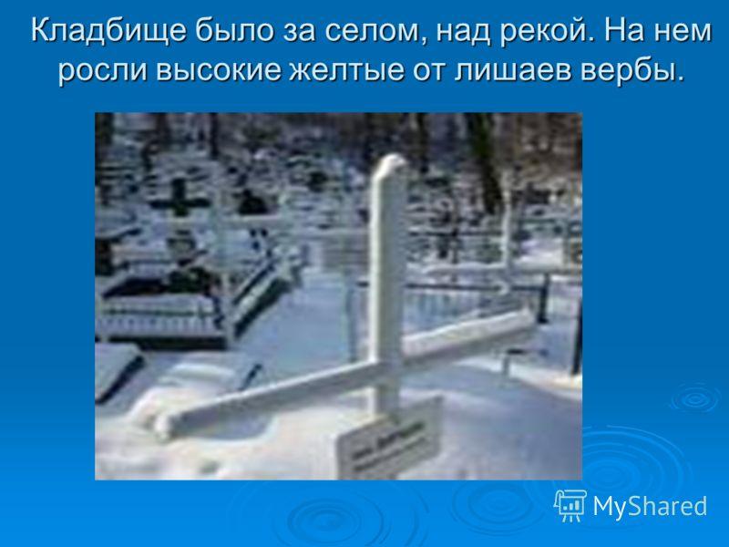 Кладбище было за селом, над рекой. На нем росли высокие желтые от лишаев вербы.