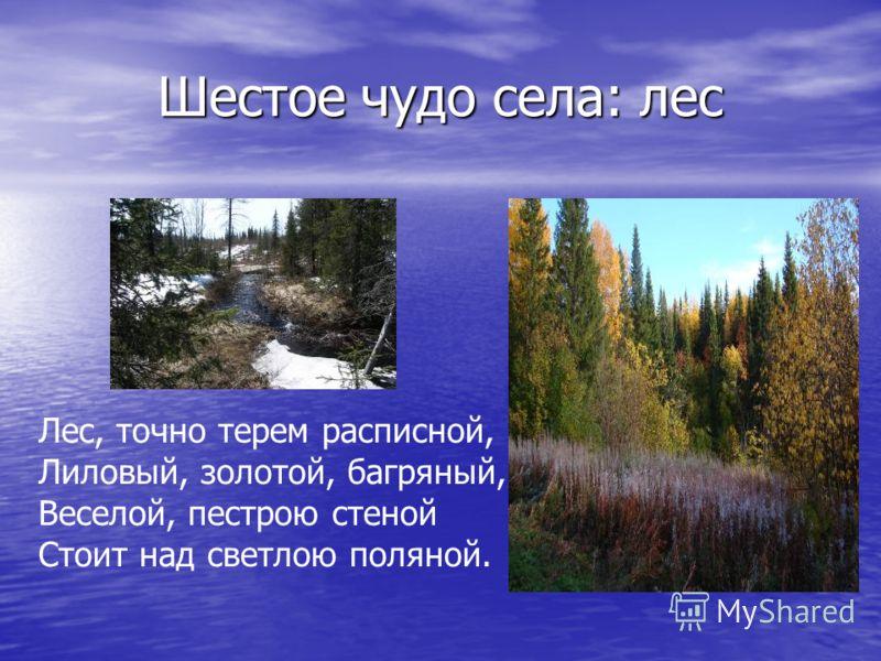 Шестое чудо села: лес Лес, точно терем расписной, Лиловый, золотой, багряный, Веселой, пестрою стеной Стоит над светлою поляной.